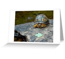Loafing Turtle Greeting Card