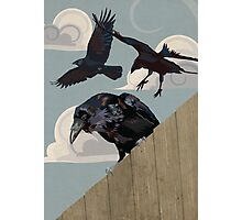 Crow invasion Photographic Print