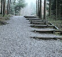 Stairway in the Forest by inspiringwords