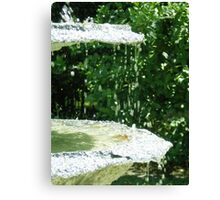 Fountain Magic Canvas Print
