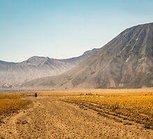 Mt. Bromo Walk by Antti Muranen