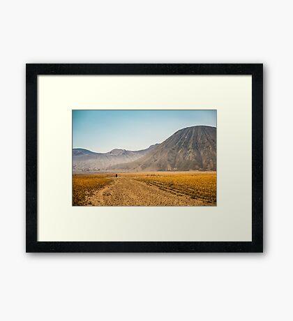 Mt. Bromo Walk Framed Print