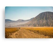 Mt. Bromo Walk Canvas Print