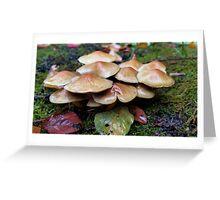 Fungus Amugus Greeting Card
