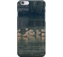 Shimmering Gulls iPhone Case/Skin