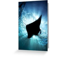 Manta Silhouette Greeting Card