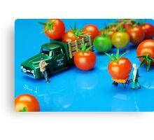 Tomato Business Canvas Print