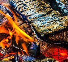 Fire Wood by Antti Muranen