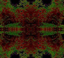 Vivid Burst by purelightimages