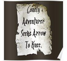 Lonely Adventurer Poster