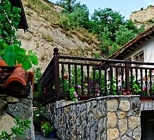 A country house in rural Bulgaria by atomov