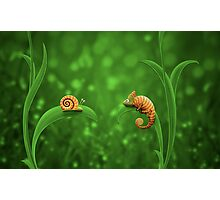 Snail and Chameleon Photographic Print