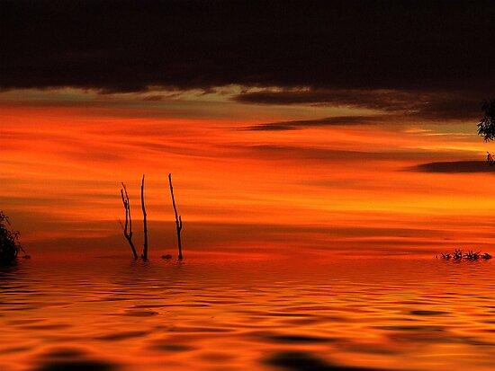 Desert floods... by debsphotos