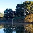 Tranquility in the Adelaide Hills by Elana Bailey