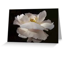 Dance of the Flowers. Greeting Card