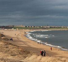 Big Beach by Alan Rodmell