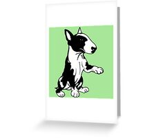 Coloured English Bull Terrier  Greeting Card