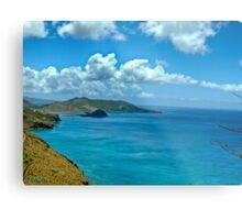 Caribbean View Metal Print