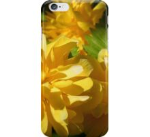 Kerria pleniflora iPhone Case/Skin