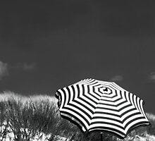 an English summer by Dorit Fuhg