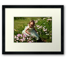 Small Treasures Framed Print