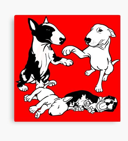 English Bull Terrier Family  Canvas Print