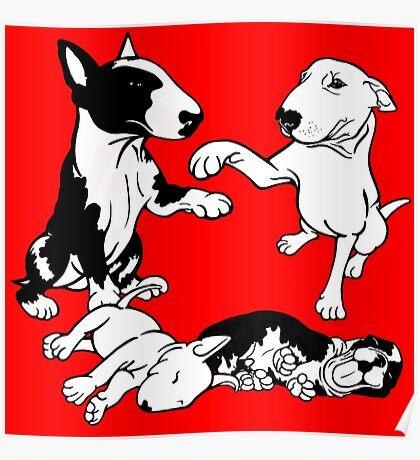 English Bull Terrier Family  Poster
