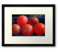 red bouys Framed Print