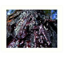 Raw-Red Amber.... Art Print