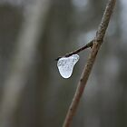 Frozen Tear Drop by stat4504