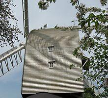 Finchingfield Post Mill by Susan E. King