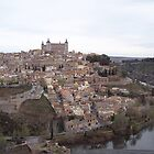 Hilltop of Toledo, Spain by CherylBee