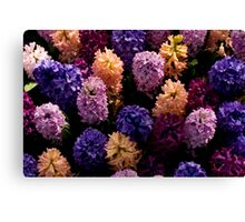 Floral orchestra Canvas Print
