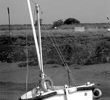 Beached boat, Woodrolfe Creek, Essex  by newbeltane