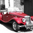 Red MG by Susan E. King