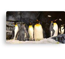 Penguin Planet Canvas Print