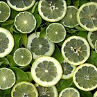 Lemon And Lime by Christian Slanec   FineArt Studio