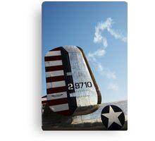 Air Americana Canvas Print