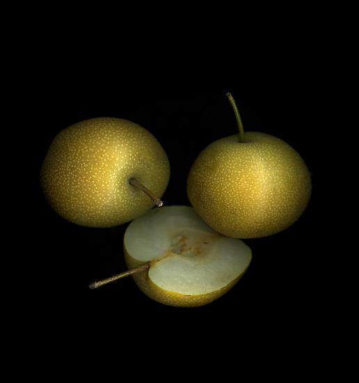 Asian Pears by Christian Slanec   FineArt Studio