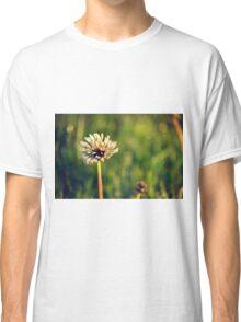 Rainy Dandelion Classic T-Shirt