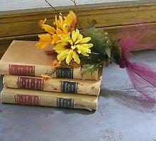 Vintage Law Books by lisavonbiela
