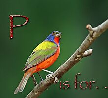 P is for . . . by Bonnie T.  Barry