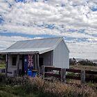 Australia by yolanda