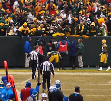 The Lambeau Leap by Tim Ray