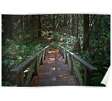 Russian River State Park Poster