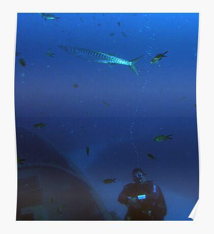 Fish Watcher Poster