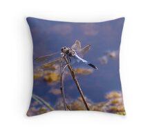 Blue Body Dragon Fly Throw Pillow