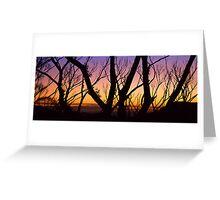 Windy Saddle Sunset Greeting Card