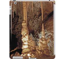 RT14 - Carlsbad Caves, New Mexico iPad Case/Skin