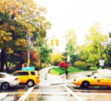 New York City, Central Park Entrance Sticker